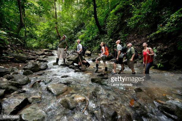 Eco Tourists hike a rain forest trail along the Osa Peninsula, Cos