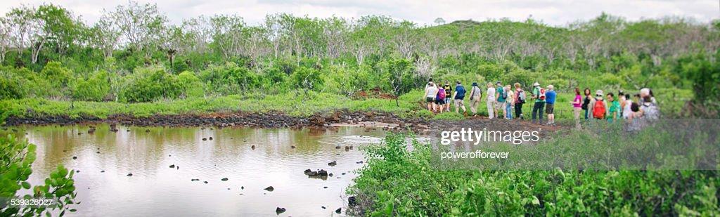 Turistas ecológicos na ilha de Santa Cruz de Galápagos : Foto de stock