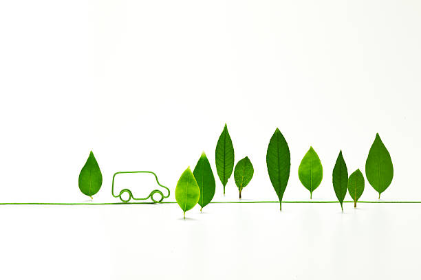 Eco-car Shaped   Electric Cord With Standing Leave Wall Art