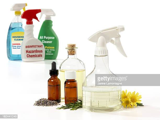 Eco-Friendly Household Cleaners