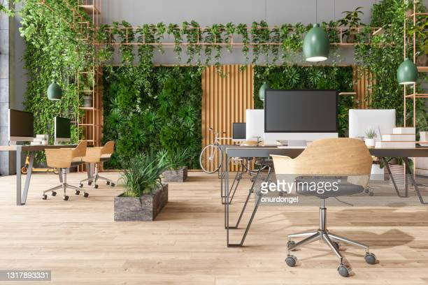 eco-friendly open plan modern office with tables, office chairs, pendant lights, creeper plants and vertical garden background - wood material stock pictures, royalty-free photos & images