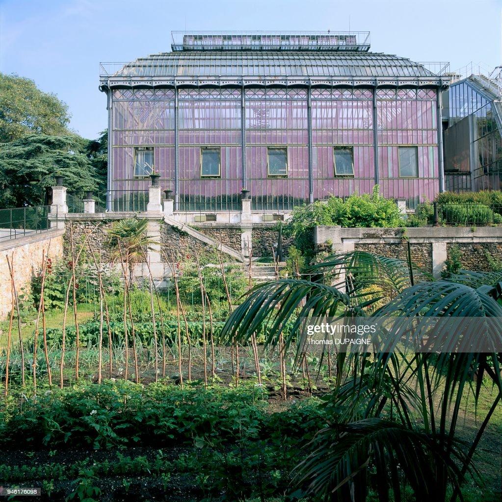 Ecole de Botanique, Jardin des Plantes, Paris 5? . Nachrichtenfoto ...