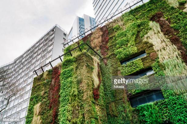 ecologic building architecture in são paulo, brazil - green stock pictures, royalty-free photos & images