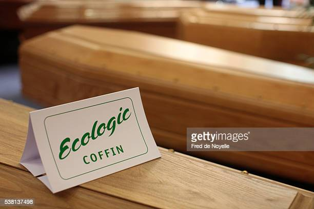 ecologic coffin - coffin stock pictures, royalty-free photos & images