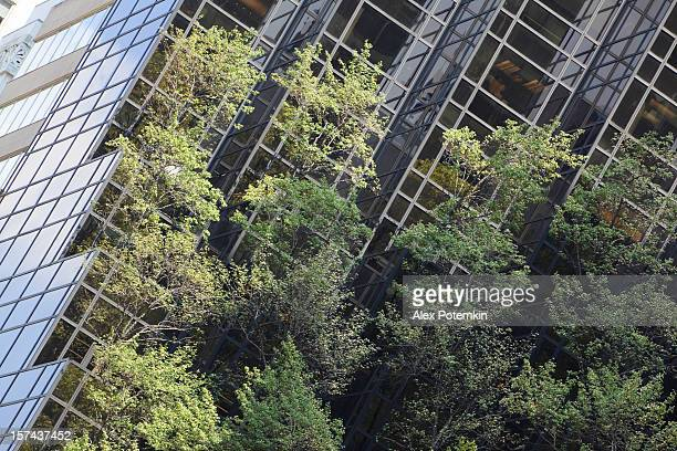 Maison de l'écologie verte avec arbres