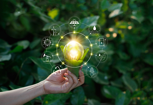Ecology concept. Hand holding light bulb against nature on green leaf with icons energy sources for renewable, sustainable development, save energy. 1158790704