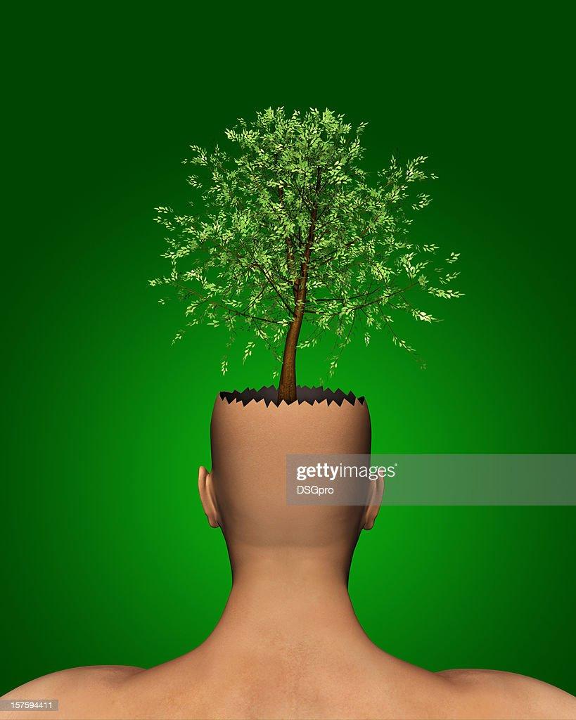 Ecology : Stock Photo