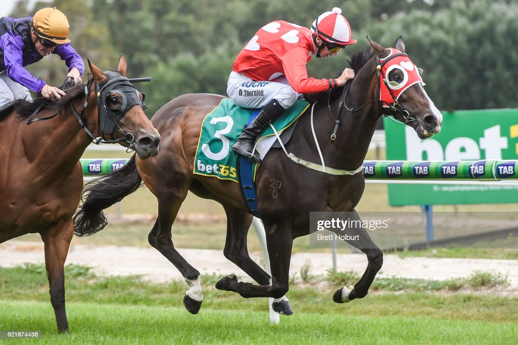 XXXX Gold F&M BM58 Handicap : News Photo