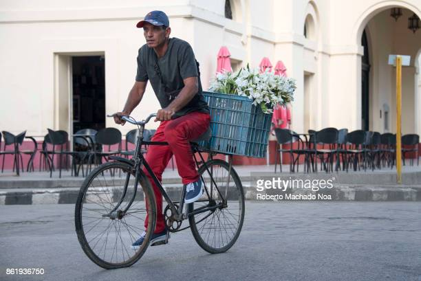 Economic changes Man riding a bicycle and selling white flowers in the city Cuban people can now legally sell in the city streets