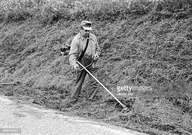 economy work occupation gardening landscape gardener mows the grass on a slope aged 40 to 50 years Black Forest BadenWuerttemberg