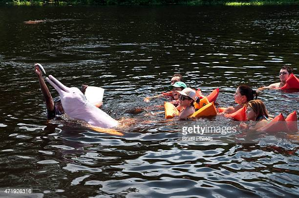 Ecotourism in Amazon rain forest - Tourists have fun and feed the Amazon river dolphin or Pink River Dolphin , a freshwater river dolphin endemic to...