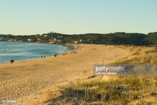 ecotourism in beach of lanzada ( o grove - spain) - grove imagens e fotografias de stock