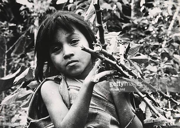 Ecuador About 15 km from Sucua on the Rio Upano a Jivaro girl helps clear a jungle area for planting