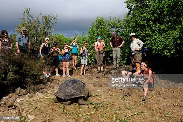 Ecuador Galapagos Islands Santa Cruz Island Charles Darwin Station People With Giant Tortoises