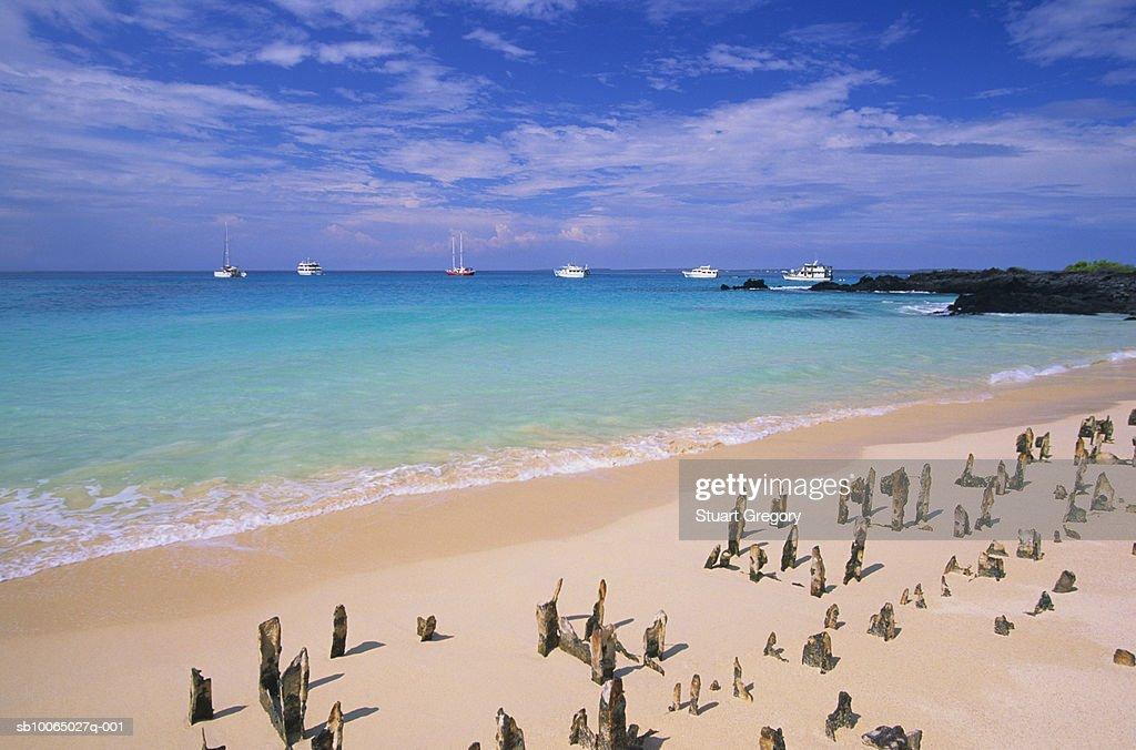 Ecuador, Galapagos, Santa Cruz Island, Bachas Beach, remains of ferry : Foto de stock