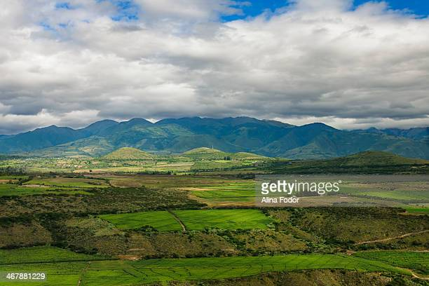 CONTENT] Ecuador Ssouth america latin america agricultural green land countryside farm field plant landscape harvest country rural growth agriculture...
