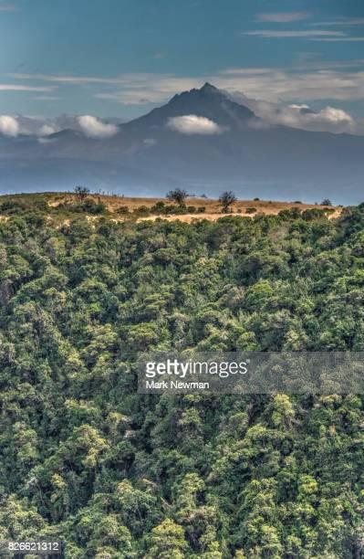 Ecuadorean Countryside