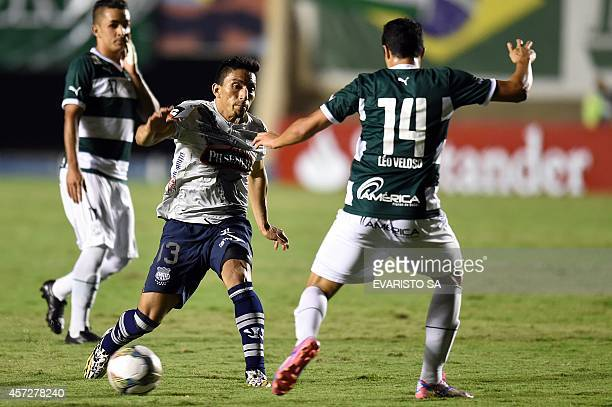 Ecuador's Emelec's player Angel Mena and Brazil's Goias' player Leo Veloso vie for the ball during their Sudamericana Cup second leg football match...