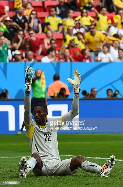 Ecuador's goalkeeper Alexander Dominguez reacts during a Group E football match between Switzerland and Ecuador at the Mane Garrincha National...