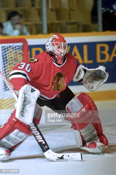 Ed Belfour of the Chicago Black Hawks skates against the Toronto Maple Leafs on January 24 1996 at Maple Leaf Gardens in Toronto Ontario Canada