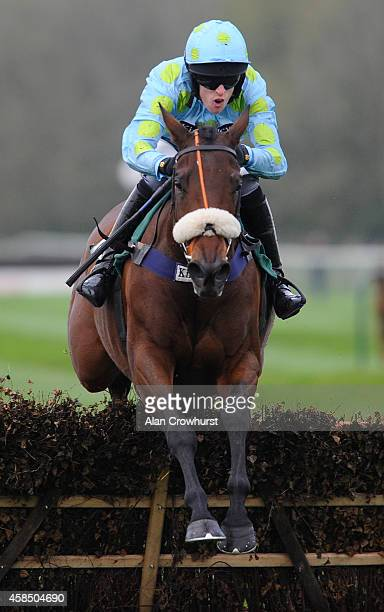 Ed Cookson riding Agent Fedora clear the last to win The Haygain Hay Steamers Clean Healthy Hay Mares' Handicap Hurdle Race at Towcester racecourse...