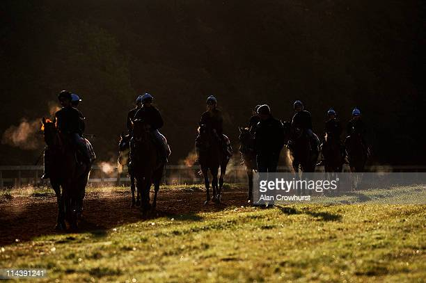 Ed Dunlop's string return from Warren Hill gallops on May 19 2011 in Newmarket England