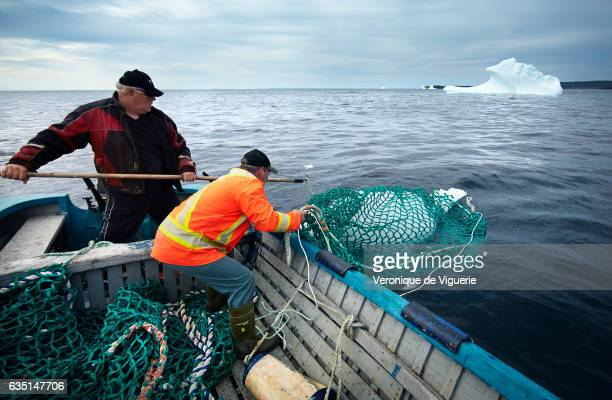 Ed Kean and Philip Kennedy are fishing an iceberg in Bonavista Bay As more icebergs drift south due to climate change a few enterprising seafarers...