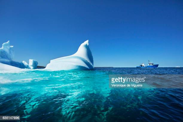 Ed Kean's vessel the Green Waters in the middle of icebergs in Bonavista Bay As more icebergs drift south due to climate change a few enterprising...