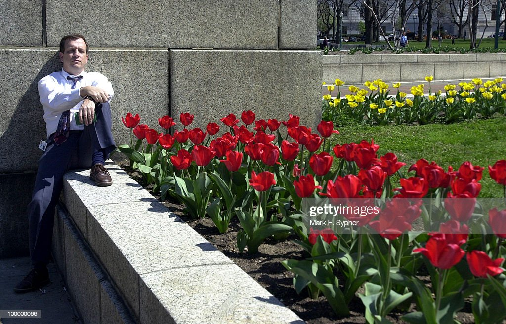 Ed Smith relaxes amongst the tulips at the North Fountain during his lunchtime getaway from his office on Tuesday.