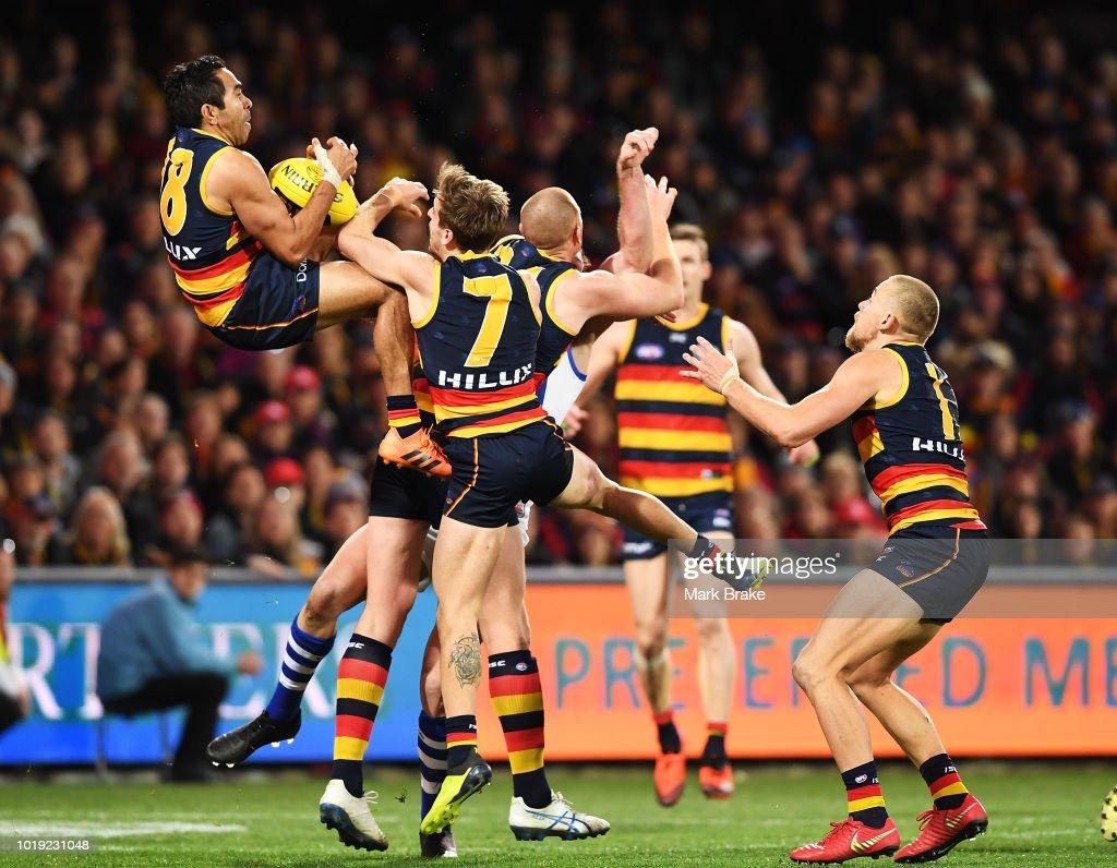 AFL Rd 22 - Adelaide v North Melbourne : News Photo
