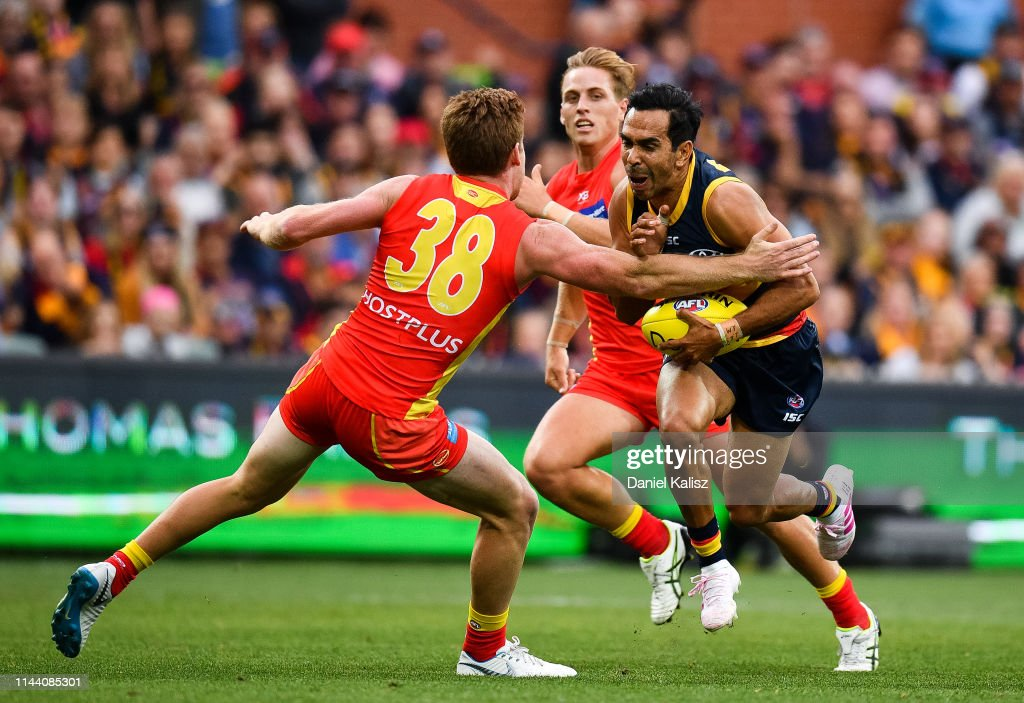 AFL Rd 5 - Adelaide v Gold Coast : News Photo
