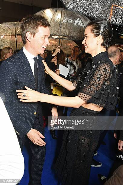 Eddie Redmayne and Katherine Waterston attend the European Premiere of 'Fantastic Beasts And Where To Find Them' at Odeon Leicester Square on...