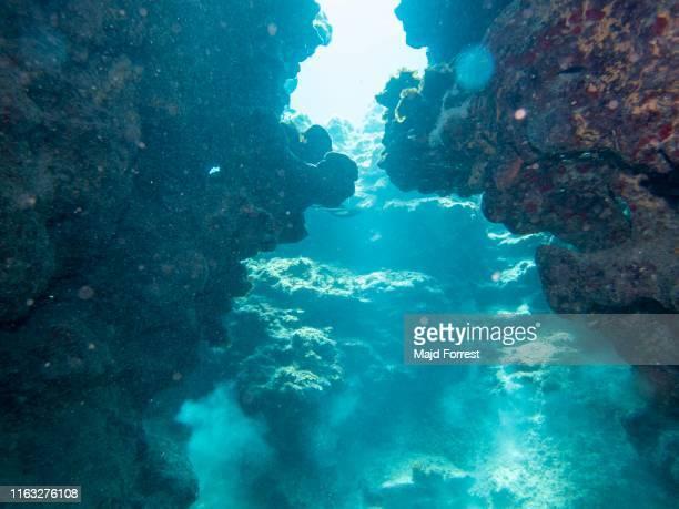 eden rock caves, grand cayman - exotismo fotografías e imágenes de stock