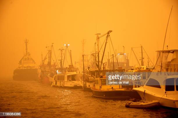 eden wharf. - nsw bushfires stock pictures, royalty-free photos & images