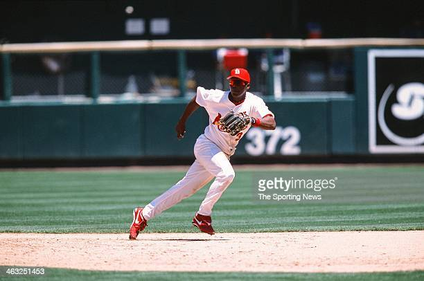 Edgar Renteria of the St Louis Cardinals fields during the game against the Chicago Cubs on May 14 2002 at Busch Stadium in St Louis Missouri