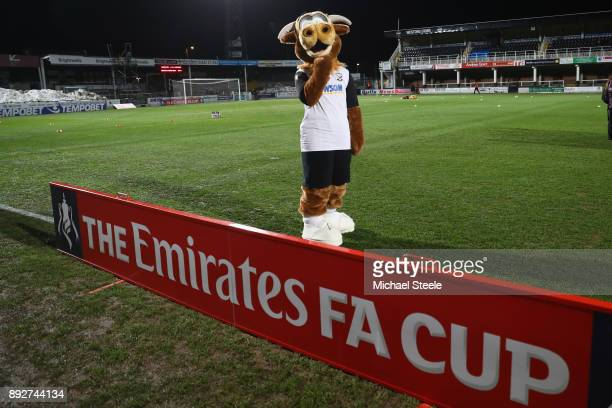 Edgar the Hereford FC Mascot pitchside ahead of the Emirates FA Cup second round replay match between Hereford FC and Fleetwood Town at Edgar Street...