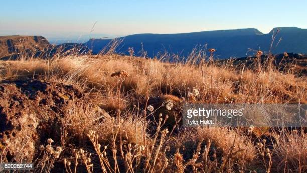 edge of kiger gorge summit steens mountain near malhuer wildlife refuge 14 - steens mountain stock pictures, royalty-free photos & images