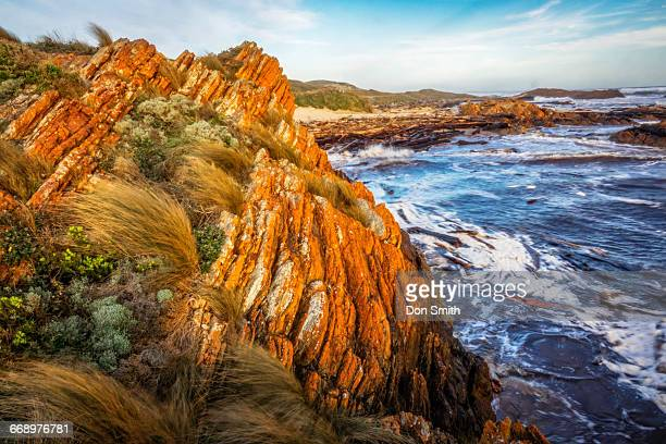 edge of the world - don smith stock pictures, royalty-free photos & images