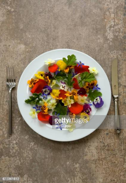 edible flowers on white plate with knife and fork at side - nasturtium stock pictures, royalty-free photos & images