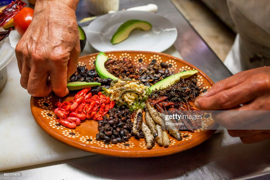 Edible insects prepared by a Mexican chef : Stock Photo