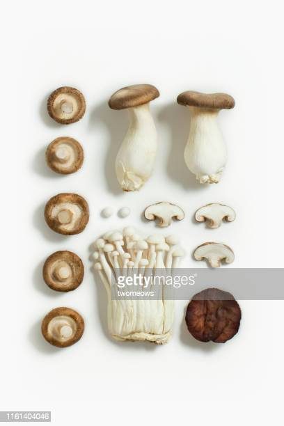 edible mushroom flat lay image. - edible mushroom stock pictures, royalty-free photos & images