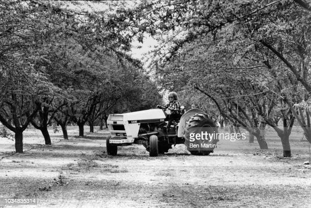 Edie Adams comedienne and singer driving a tractor on her almond ranch in Bakersfield March 26th 1982