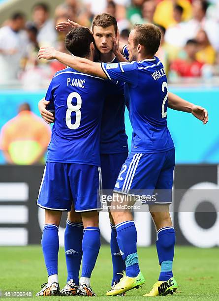 Edin Dzeko of Bosnia and Herzegovina celebrates scoring his team's first goal during the 2014 FIFA World Cup Brazil Group F match between Bosnia and...