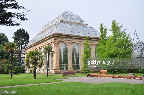 edinburgh botanical garden - botanical garden stock pictures, royalty-free photos & images