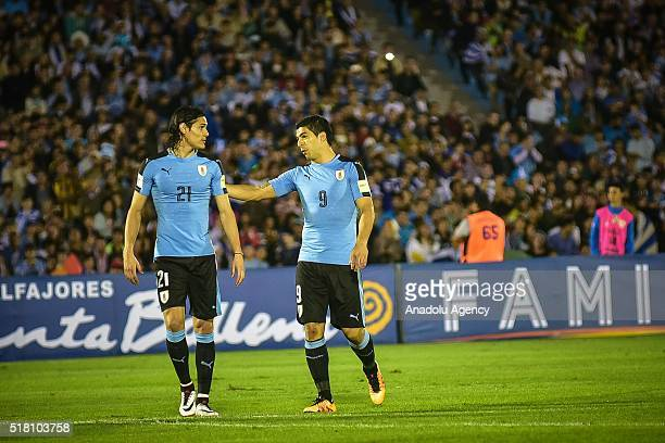Edinson Cavani and Luis Suarez of Uruguay gesture during a match between Uruguay and Peru as part of FIFA 2018 World Cup Qualifiers at Centenario...