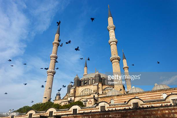 edirne, turkey - selimiye mosque stock pictures, royalty-free photos & images