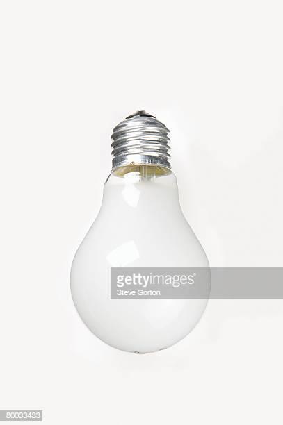 Edison screw end cap bulb