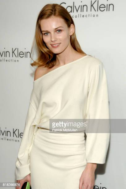Edita Vilkeviciute attends CALVIN KLEIN COLLECTION Afterparty to Celebrate the Men's Women's Fall 2010 Collections at 15 Little West 12th St on...