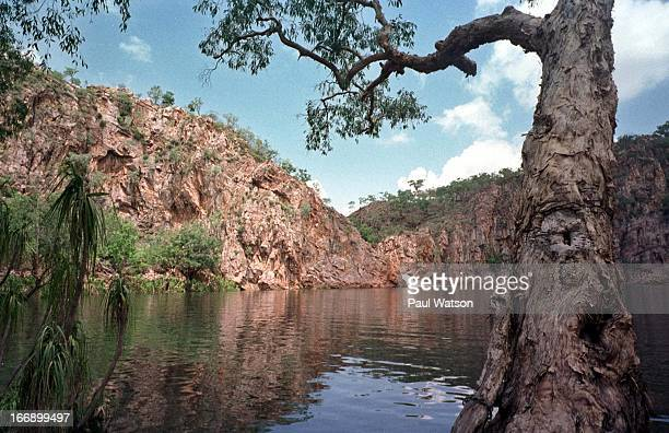Edith Falls about 40 kms north of Alice Spring are part of the Nitmiluk National Park which is jointly administered by the Aboriginal people and the...