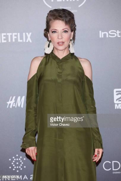 Edith Gonzalez attends the Premio Iberoamericano De Cine Fenix 2017 at Teatro de La Ciudad on December 6 2017 in Mexico City Mexico